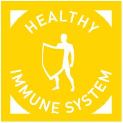 rebound exercise good for immune system